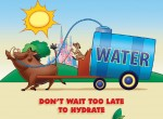 Tip 13 - Don't wait to hydrate