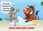 Tip 16 - Wash your paws often